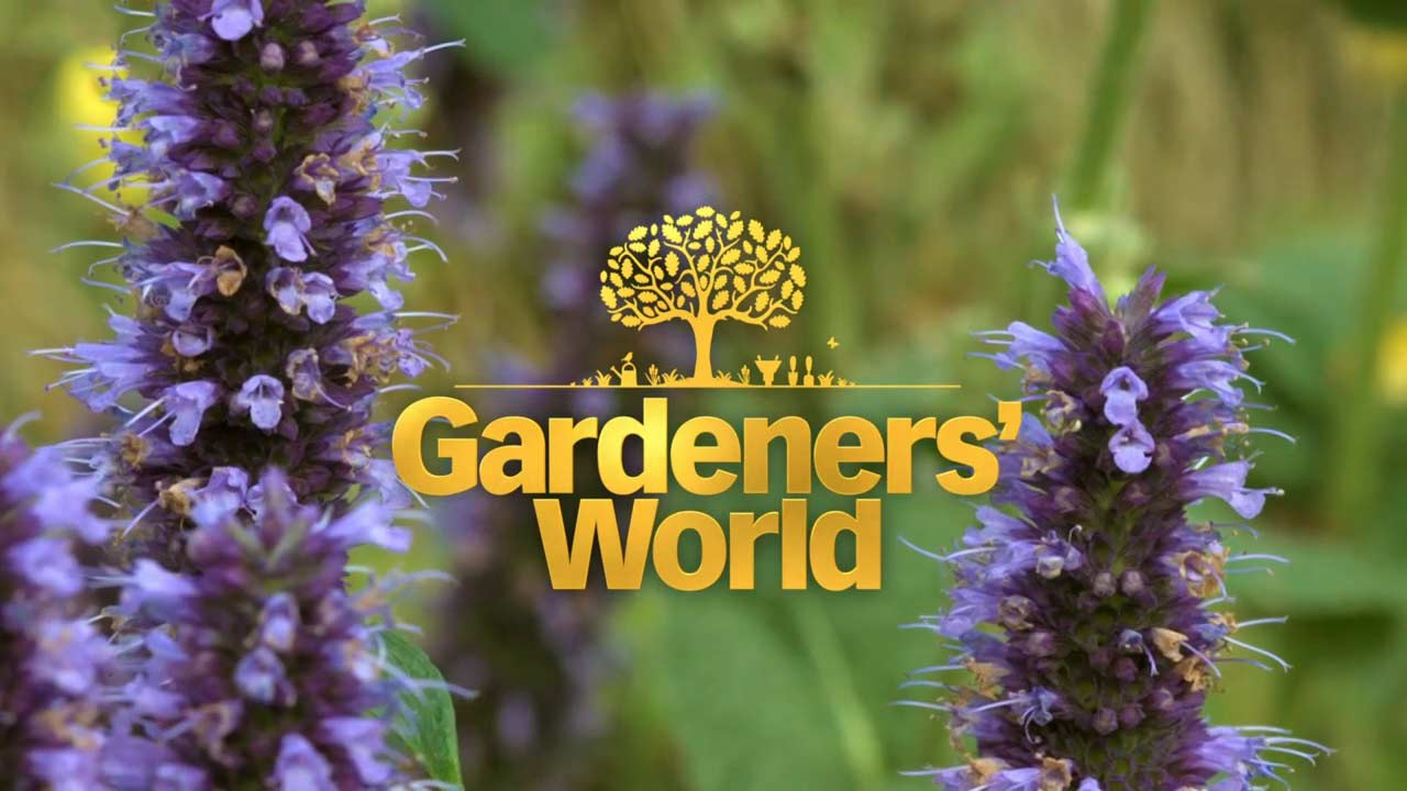 Read more about the article Gardeners' World 2021 episode 26