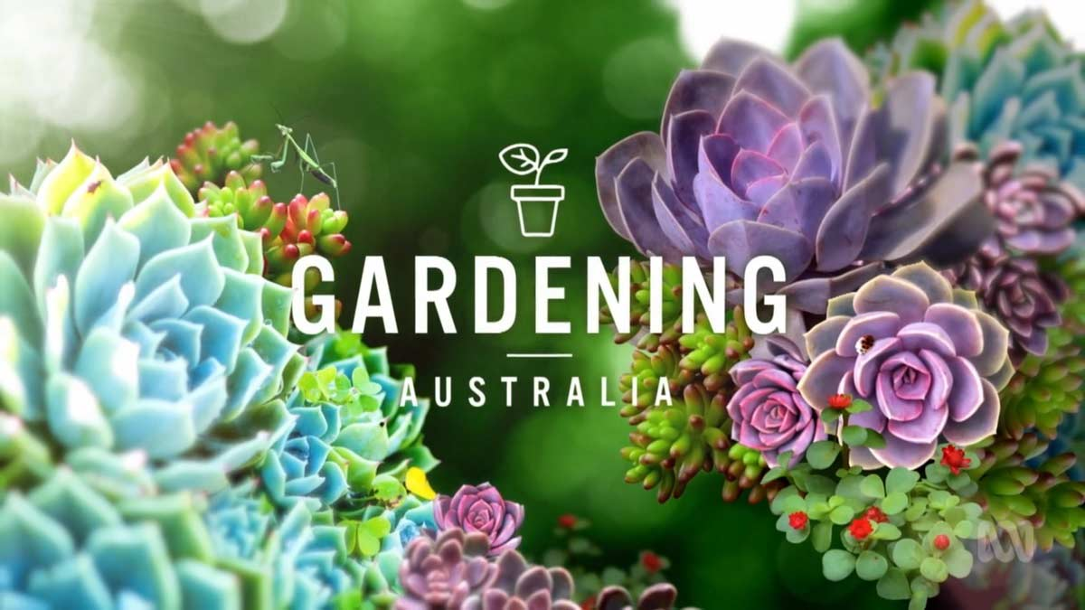 Read more about the article Gardening Australia episode 26 2021