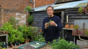 Read more about the article Gardeners' World 2021 episode 27
