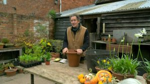 Read more about the article Gardeners' World 2021 episode 30